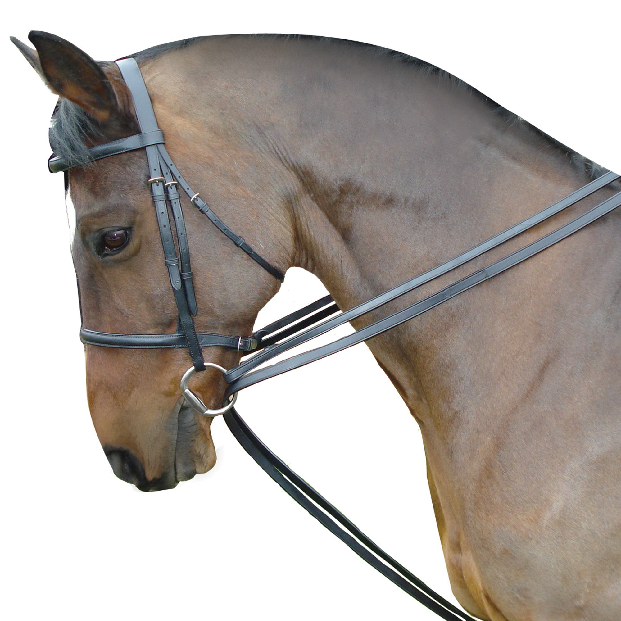 Kincade Leather Draw Reins Equine Mania