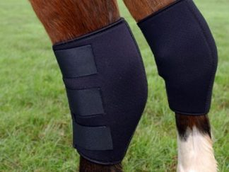 Hock Boots