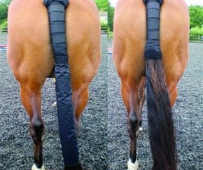 Tail Guard